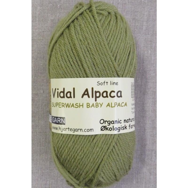 Vidal Alpaca/ Superwash Baby Alpaca i Lys oliven-311