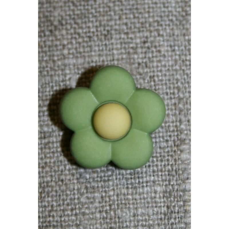 2-farvet blomsterknap lime-grøn/lime-gul-31