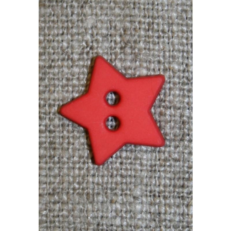 Knapstjerneorangerd-31