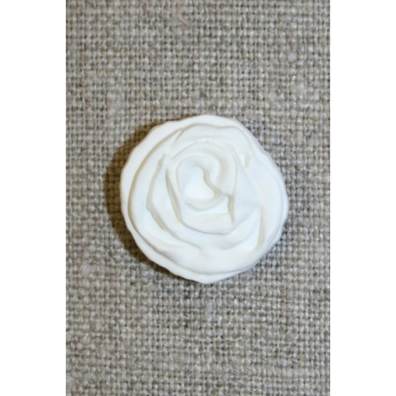 Hvid rose knap, 20 mm.-35