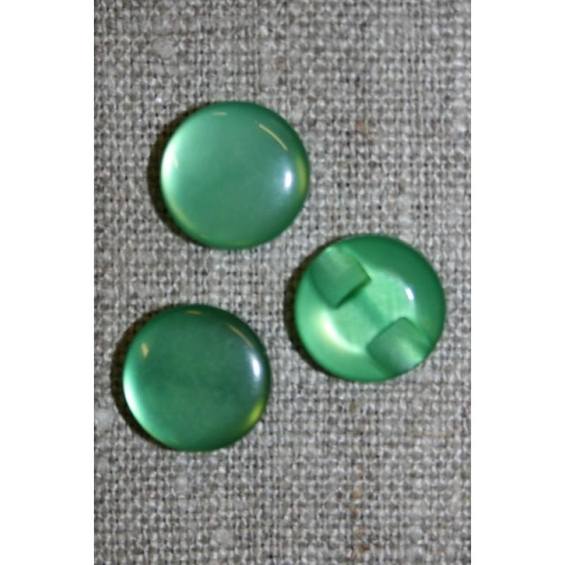 Rund blank knap 12 mm. grøn-31