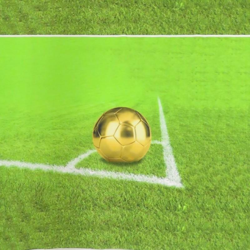 Rapport Bomuldsjersey økotex med digitalt tryk med fodbold i lime-grøn-04