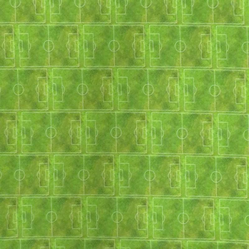 Rapport Bomuldsjersey økotex med digitalt tryk med fodbold i lime-grøn-34