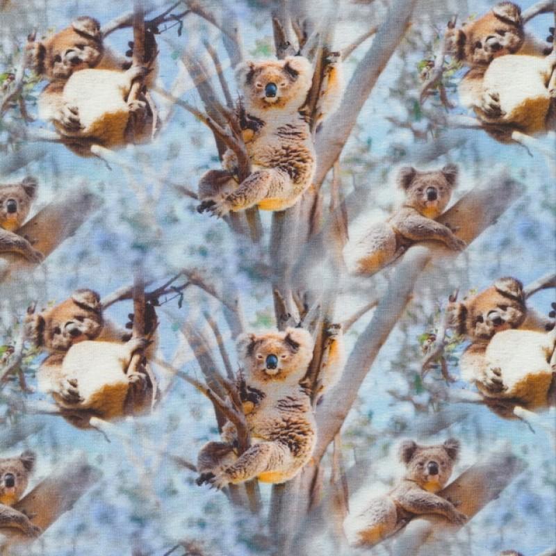 Afklip Bomuld/lycra økotex m/digitalt tryk, koala i lyseblå 40x60 cm.-35