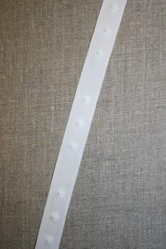 Hvidt bånd med trykknap / kun ene del