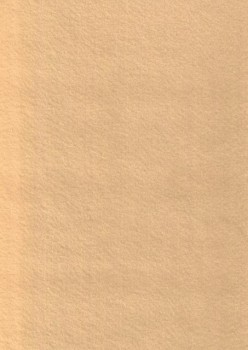 Hobby Filt hudfarvet/laks