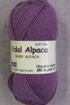 Vidal Alpaca/ Superwash Baby Alpaca i Lyng