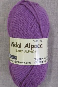 Vidal Alpaca/ Superwash Baby Alpaca i Syren