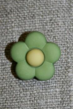 2-farvet blomsterknap lime-grøn/lime-gul