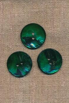 Perlemors-knap grøn 25 mm.