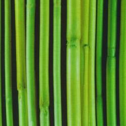 Jersey i Bambus med digitalprint i sort med bambusrør i grøn