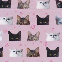 Bomuld/lycra økotex m/digitalt tryk rosa med katte