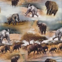 Afklip Bomuld/lycra økotex m/digitalt tryk med elefanter 40x60 cm.