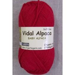 VidalAlpacaSuperwashBabyAlpacaiRd-20