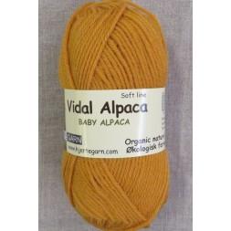 Vidal Alpaca/ Superwash Baby Alpaca i Carry-20