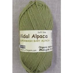 Vidal Alpaca/ Superwash Baby Alpaca i Lys oliven-20