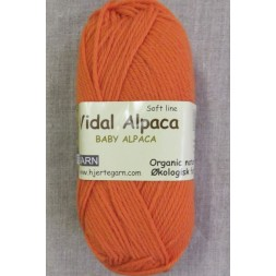 Vidal Alpaca/ Superwash Baby Alpaca i Lys orange-20