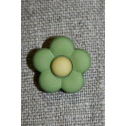 2-farvet blomsterknap lime-grøn/lime-gul-20
