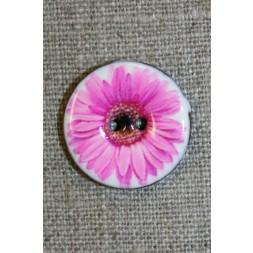 Kokos-knap m/emalje, hvid m/lyserød blomst, 23 mm.-20