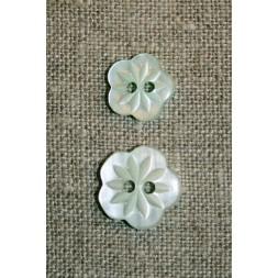 Blomster-knap mint-20