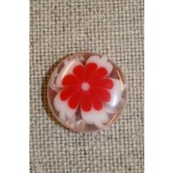 Klar knap m/blomst rød-20