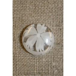 Klar knap m/blomst hvid-20