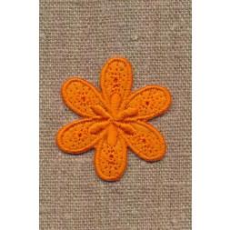 Motiv med blomst i orange-20