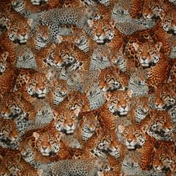 Bomulds jersey økotex digitalt print med leopard-20