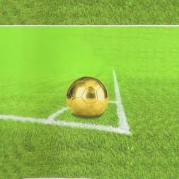 Rapport Bomuldsjersey økotex med digitalt tryk med fodbold i lime-grøn-20