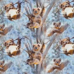 Afklip Bomuld/lycra økotex m/digitalt tryk, koala i lyseblå 40x60 cm.-20