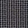 Bengalin i sort og hvid tern-04