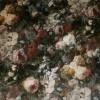 Velour m/digitalt blomster-print grå/grøn/rosa-03