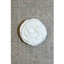 Hvid rose knap, 20 mm.