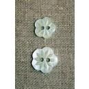Blomster-knap mint